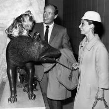Audrey Hepburn și Mel Ferrer