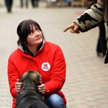 VIER PFOTEN IN UKRAINE