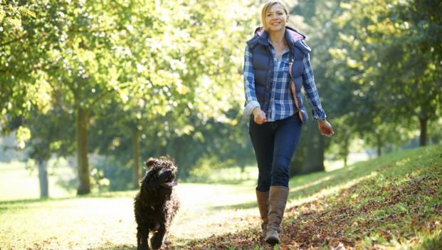 Imagini pentru plimba câinele