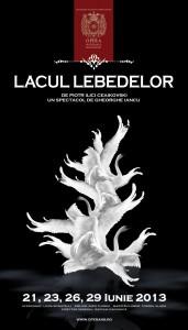 LACUL_LEBEDELOR_web