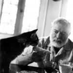 Hemingway pisica