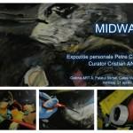 """""""Midway"""": semnal de alarmă artistic despre pericolul plasticului din oceane"""