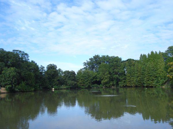 Clara Meer Lake Atlanta